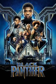 Black Panther (2018) HD Hindi Dubbed Watch Online
