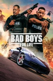Bad Boys for Life 2020 HD Hindi Dubbed Movie Watch Online