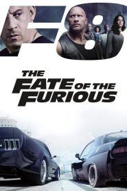The Fate of the Furious (2017) Hindi Dubbed HD Watch Online