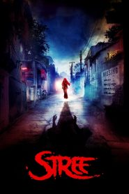 Stree (2018) HD Full Movie Watch Online
